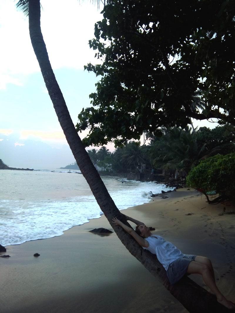 Лучшие курорты Шри-Ланки. Мирисса.