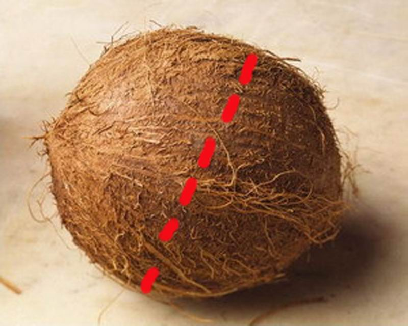 Удар делается по центру кокоса.