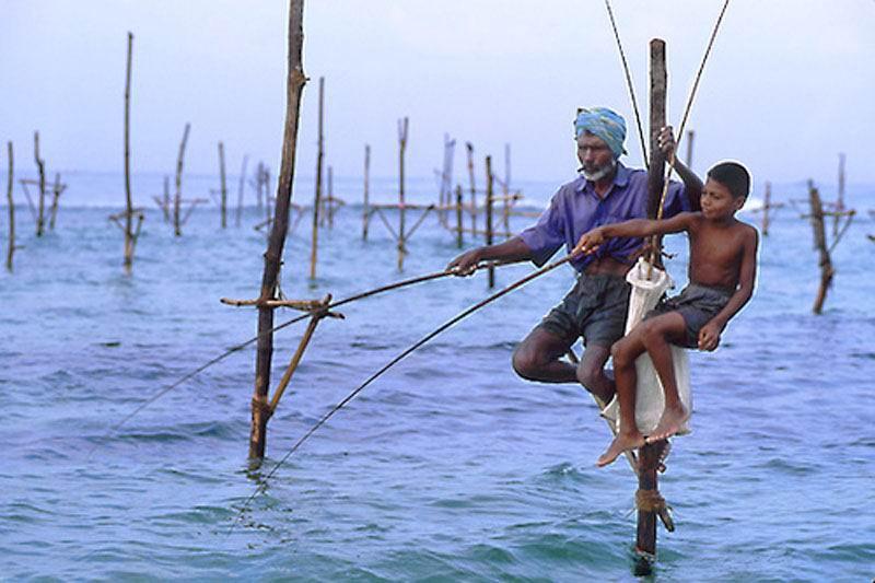 Рыбалка в Шри-Ланке.